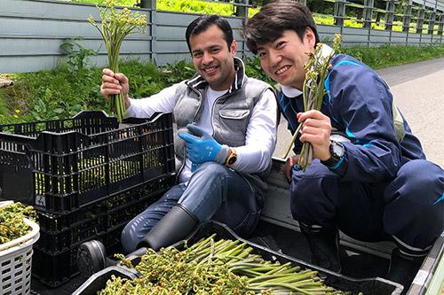 #003 黒わらび収穫体験